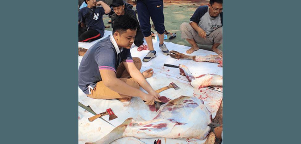 SIT Nurul Fikri Sembelih 72 Hewan Ternak Kurban